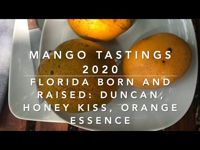 FLORIDA MANGO TASTINGS 2020:  Duncan, Honey Kiss, Orange Essence