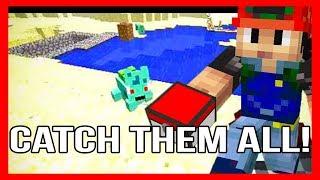 Minecraft Pokemon Mod - Pokemob