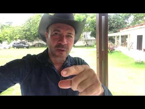 São Vicente FM de Cristópolis - Cantor Geraldo Cardoso