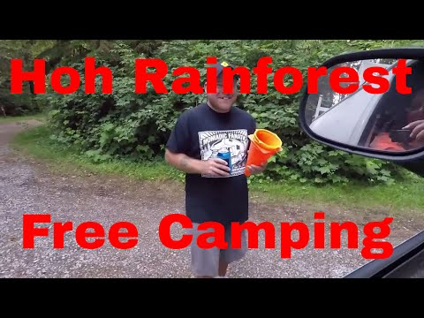 Free Camping With Nomadic Fanatic & Living Free In Hoh Rainforest Van Life On The Road