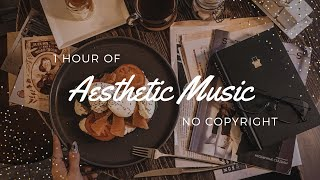 1 Hour of Aesthetic Music | No Copyright Background Music Playlist 🎼