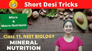 Mineral Nutrition | Super Easy Tricks | Functions of Macro & Micro Nutrients
