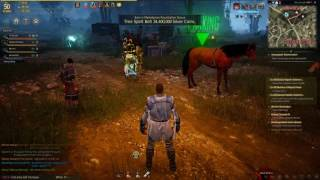 Black Desert Online: WoW! that's what GRINDING is😮
