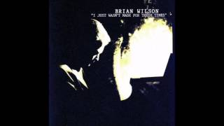 Watch Brian Wilson Still I Dream Of It video