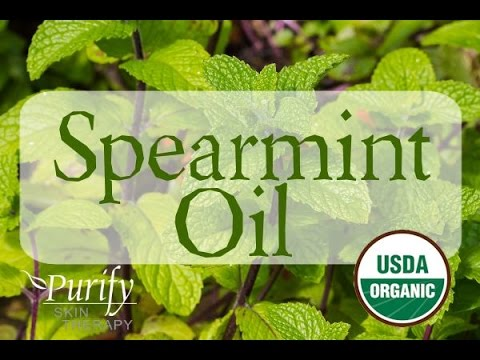 spearmint-essential-oil-~-all-you-ever-need-to-know