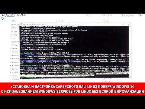 Windows 10: установка и настройка хакерского Kali Linux в Windows 10, как приложения WSL