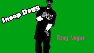Sony vegas pro. Урок: Как же вставить Snoop Dogg в видео?