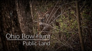 Ohio Public Land Bow Hunt | Bow Hunting Public Land