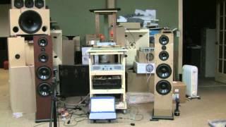 Nexus Tower MTMWW 3-way DIY Speaker design