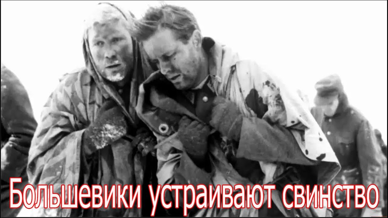Большевики устраивают свинство. Военные истории Великой Отечественной Войны