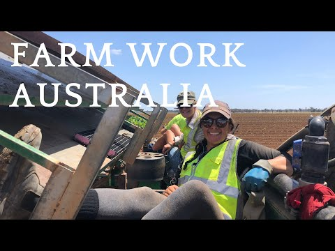 3 months of farm work in Australia