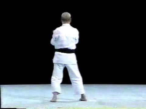 Sanchin Shito Ryu