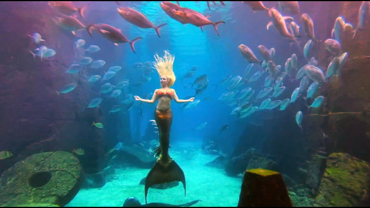 The Best Dreamy Mermaid Melissa footage Relaxing underwater (soothing ambient chillout music)
