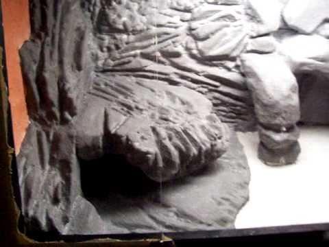 Second Habitat Bearded Dragon Home Diy Vivarium Terrarium Youtube