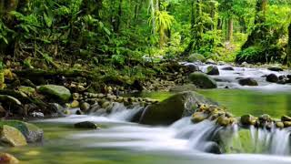 Download Mp3 Khotmil Qur'an  Instrumental