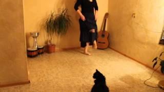 Фрагмент движения в цыганском танце Венеры Ферарь