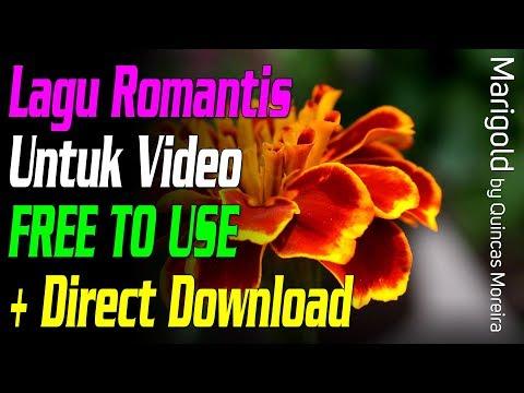 Lagu Romantis Percintaan Pernikahan Untuk Video - Marigold - Quincas Moreira (+ direct download)