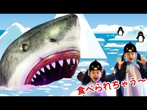 サメに食べられちゃった!!日本科学未来館【生きものになれる展】himawari-CH