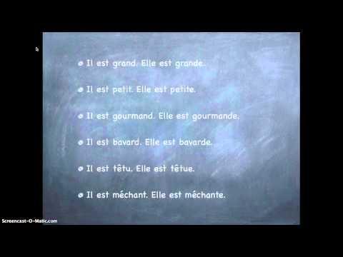Genomgång av adjektiv på franska