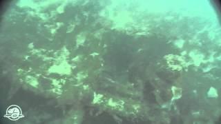 Franklin Expedition shipwreck found