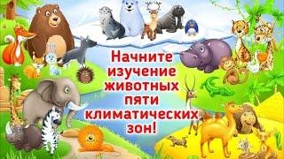 Учим животных - зверей. Обучающие мультфильмы для детей