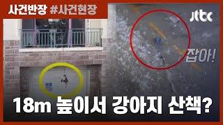 """18m 높이서 줄 묶어 '황당한 산책'…""""동물…"""
