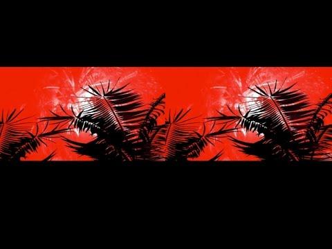 Youtube: Lary Kidd – Les palmiers brûlent dans la nuit feat. Yes McCan – Lyrics video