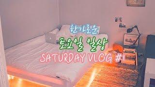 [효니월드] 한가로운 토요일 일상 ☀️   Saturday vlog #1