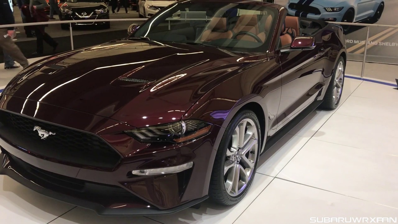 I Finally Saw a 2018 Mustang in Person! - YouTube