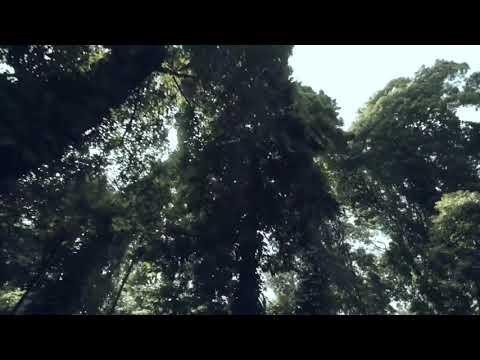 Once Mekel - Tak Sempurna ( Official Lyric Video )