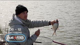 Календарь рыболова с 06 октября по 13 октября 2014 года от телеканала