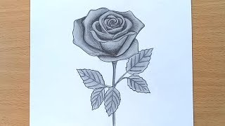 How to Draw A rose || Pencil Drawing and Shading