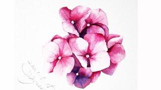 [베리현 수채화]수국 그리기| Watercolor pa…
