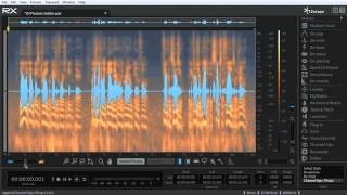 Dialogue & Voiceover Track Editing in RX 5 Advanced Audio Editor