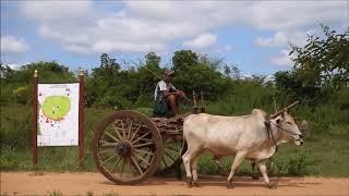 Pyu ancient cities,Pyay ,Myanmar,เมืองโบราณ ศรีเกษตร ที่เมืองแปร,พม่า