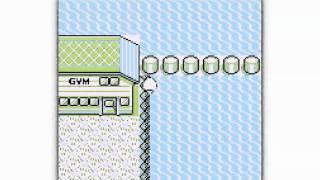 level 160 squirtle and missingno glitch pokemon blue