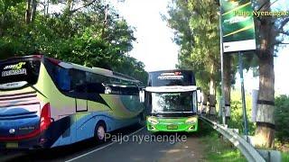 Konvoi 11 Bus Po Blue Star Ziarah Akbar Di Tanjakan Leter Es Kajar Colo Sunan Muria