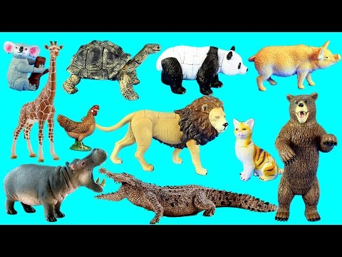 Country Farm Animals and Wild Zoo Safari Toy Animals Collection For Kids - Learning Animal Names