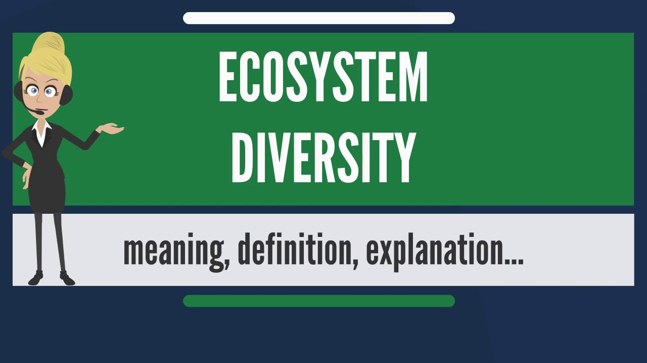 what is ecosystem diversity? what does ecosystem diversity mean