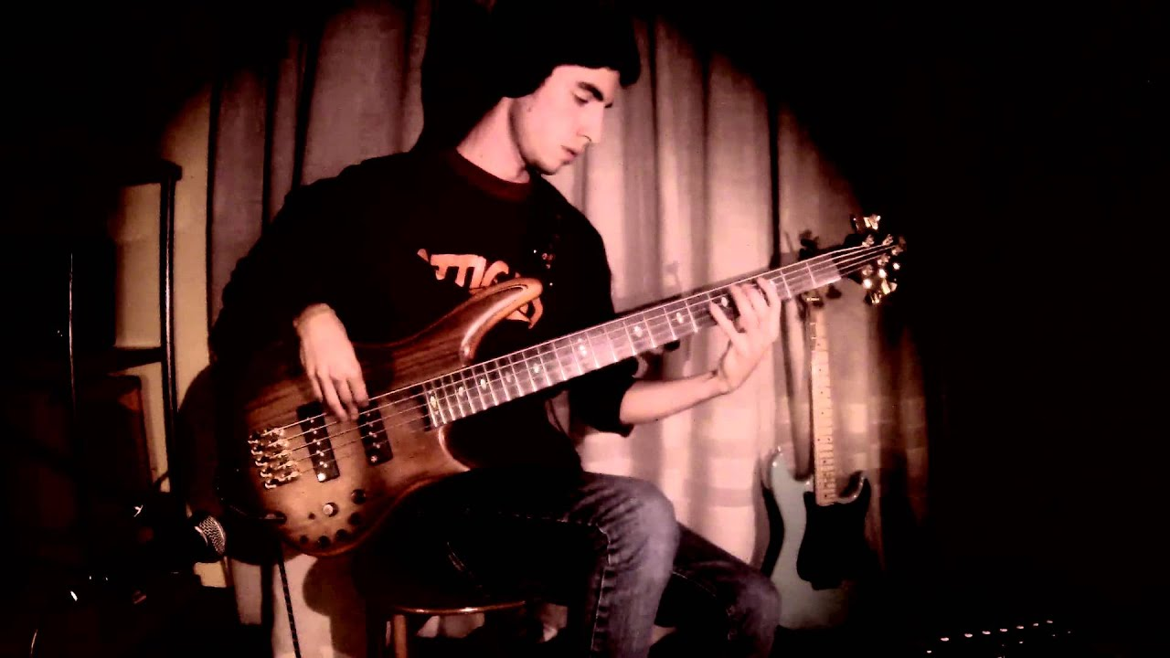 red hot chili peppers one hot minute bass cover by amedeo