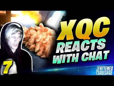 Best Of XQC REACTS To CRAZY Videos w/ CHAT #7