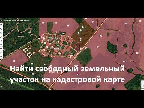 Как посмотреть земельный участок на публичной кадастровой карте