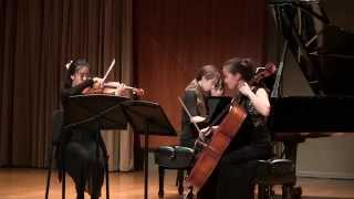 Dvořák Piano Trio no. 4 in E minor op. 90  (Dumky Trio)