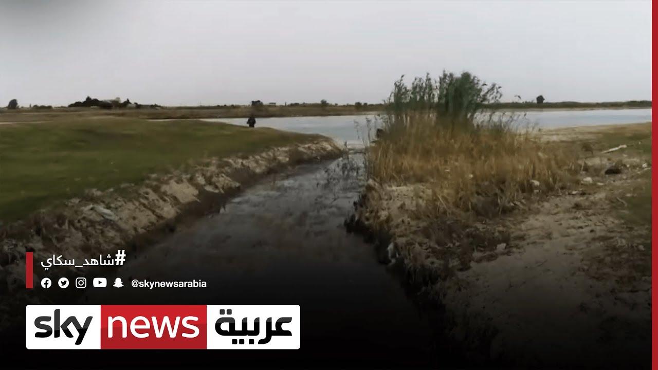 العراق .. الأمن شح المياه يلقي بظلاله على حياة العراقيين وأمنهم الغذائي
