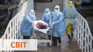 Количестве жертв коронавируса достигло 44 тыс Больше всего людей умирает в США и Испании