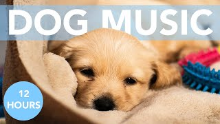 12 HOURS of Calming Music for Dogs! Soothe Anxiety!