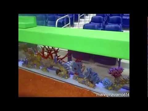 Marlin Stadium Fish Tank Draws Controversy
