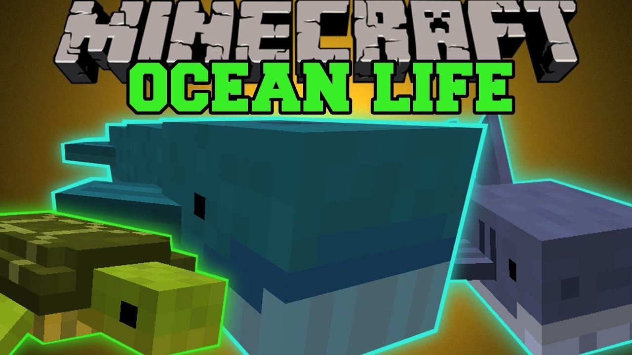 Minecraft: OCEAN LIFE (NEW OCEAN MOBS, CREATE YOUR OWN AQUARIUM!) Mod Showcase