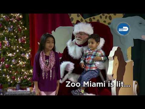 Zoo Miami: Zoo Lights