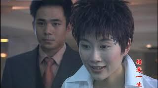 电视剧 错爱一生 20 (韩雪/温峥嵘/贾一平)